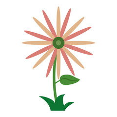 Flower with leaves plant cartoon
