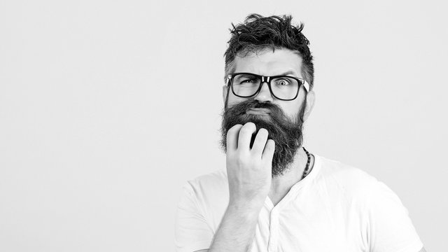 Pensive man touching his beard on white wall. Handsome man in glasses thinks. Emotional bearded guy has a doubt. Human face expressions, emotions, feelings, body language