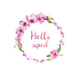 Flowers of cherry tree, spring sakura blossom, apple flowers. Floral wreath, text Hello april . Watercolor circle frame