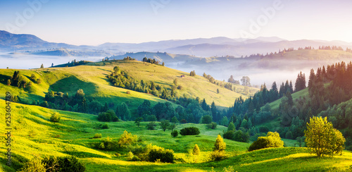 Wall mural Bright rolling countryside around a farm in the morning light.