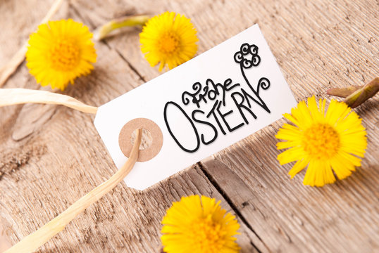 Label, Dandelion, Calligraphy Frohe Ostern Means Happy Easter