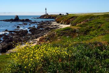 Lighthouse Point (aka Santa Cruz Point). Santa Cruz, California, USA