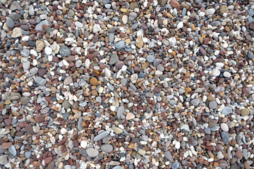 Background from many small smooth pebble stones on the sea beach on sunny day top view close-up