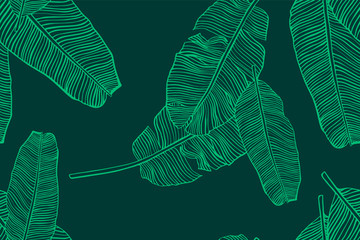 Tropical leaves pattern. Seamless texture with banana leaf. Hand drawn tropic foliage. Exotic green background.