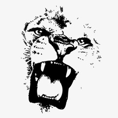 Lion head vector illustration on white background