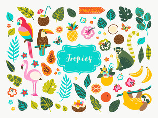 Set of tropical plants and animals hand drawn design elements