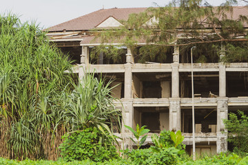 view of an abandoned resort surrounded by wildflowers and tall grasses in the Thailand