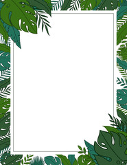 Tropical jungle leaves frame border with a blank space for a text, logo, or product designs. View from above. US Paper scale. Hand drawn vector illustration.