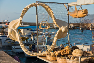 Shark jaw and other fishing products and souvenirs at the old Venetian harbor, City of Chania, Crete island, Greece