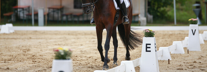 Dressage rectangle at the letter E with horse in the cut-out on the hoof-beat.. Fototapete