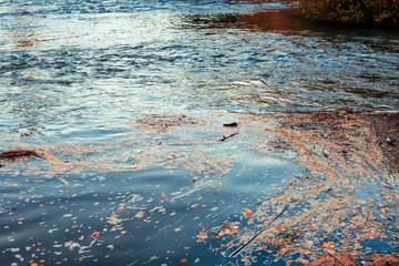 foam on polluted  water  with  rubbish in river