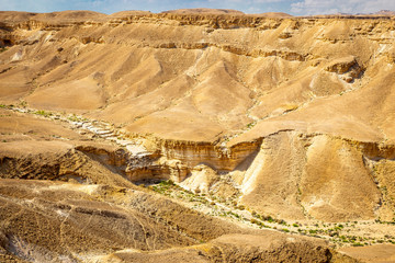 Fototapete - Desert green canyon valley landscape view, Israel nature.