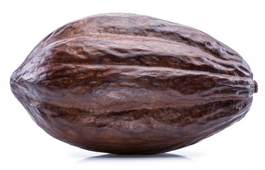 Brown cocoa pod isolated on a white background.