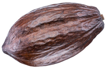 Cocoa pod on a white background. Clipping path.