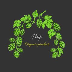 Vector template. Hop branch. Natural drink, beer. Bio frame, herbal pattern.