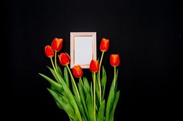 Creative composition with photo frame mock up, red tulips  on abstract  background. Flat lay, top view stylish art concept.