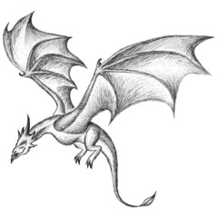The  logo dragon for T-shirt design or outwear.  Hunting style dragon background.