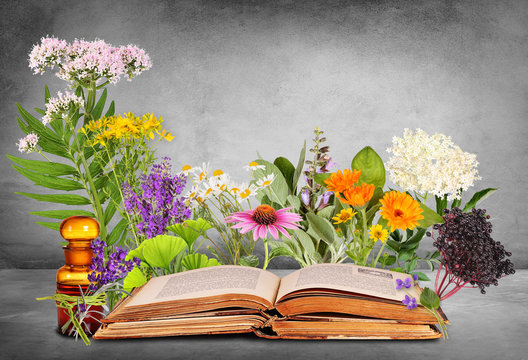 Medical plants with old books and glas bottle