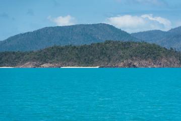 Baumbewuchs auf den Whitsunday Islands