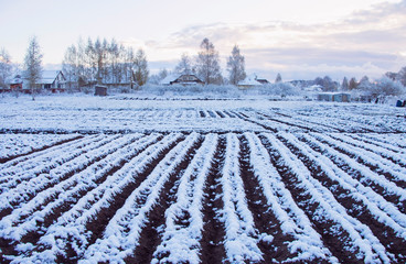 May, the farm is snow-covered planting