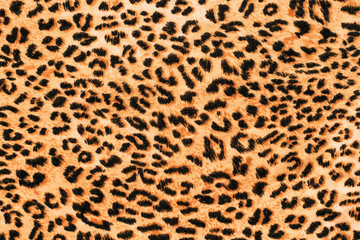 A picture of the wool of the leopard on the fabric. Close up leopard spot pattern texture background