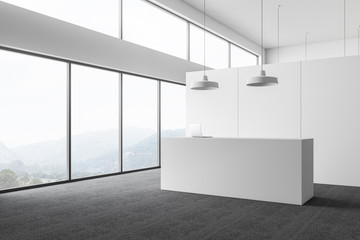 Panoramic white office with reception