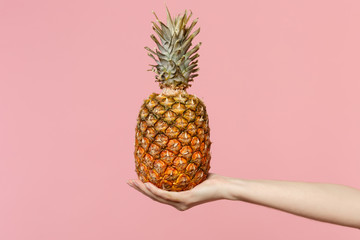 Close up cropped photo of female hold in hand fresh ripe tropical pineapple fruit isolated on pink pastel wall background. Copy space advertising mock up. People vivid lifestyle relax vacation concept