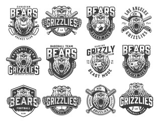 Vintage monochrome sport teams emblems set