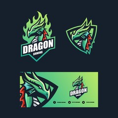 Dragon Concept illustration vector Design template