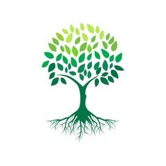 tree logo vector and illustration