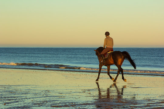 Silhouette of the men skipping on a horse on an ocean coast on a sunrise