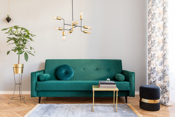 Fototapeta Bright and sunny minimalistic home interior with design green velvet sofa, furniture,plant, gold coffee table with books and elegant pendant lamp. Brown wooden parquet. Stylish decor of living room. obraz
