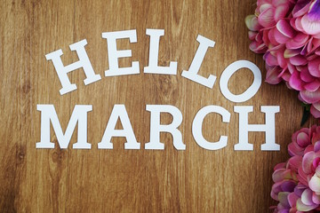 Hello March  alphabet letters with space copy and  flower on wooden background