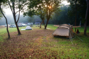 nature landscape camping tent with tree on green grass meadow and fog in jungle for trekking picnic on holiday relax and vacation travel on autumn winter or summer with warm sunlight at Ban Krang Camp