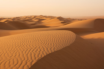 Dunes of the Wahiba Sand Desert at dawn (Oman)