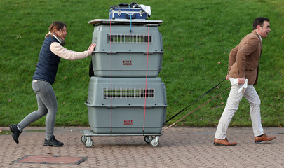 Owners arrive with their dogs for the third day of the Crufts Dog Show in Birmingham