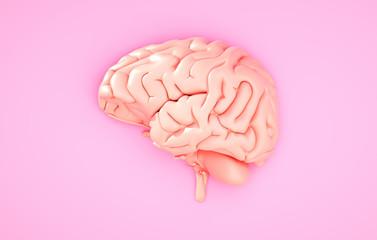 Fototapeta Pink brain on the color background