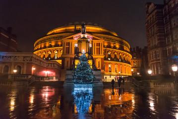 Illuminated Christmas tree in front of the Royal Albert Hall at night, South Kensington, London, England, UK