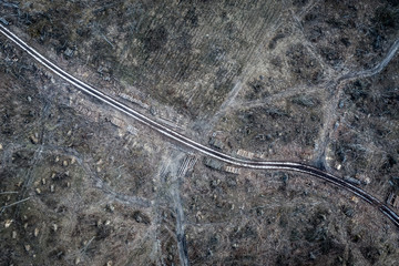 Aerial view of horrible deforestation. harvesting a forest, Europe