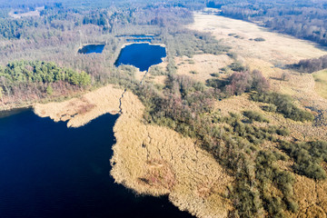 Aerial view of stunning lake and forest, Poland