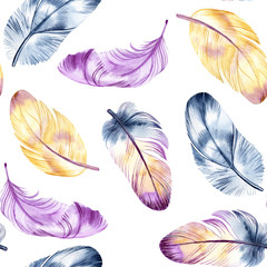 Vintage feathers design. Retro watercolour seamless pattern. Isolated on watercolor background. It can be used for card, postcard, cover, invitation, wedding card, mothers day card, birthday card
