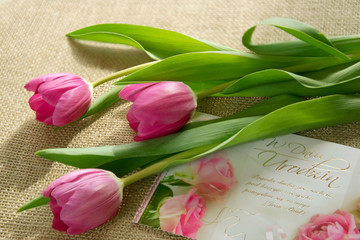 Obraz Bukiet tulipanów i kartka - fototapety do salonu