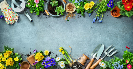 Gardening tools and spring flowers on the terrace Fototapete
