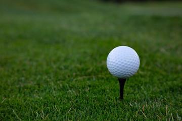 Bolas de golf puestas en encima de un tee con fondo verde y blanco