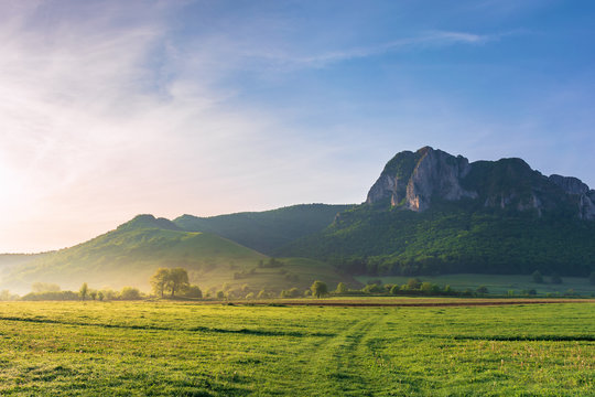 springtime countryside of romania at sunrise. beautiful scenery with trees on a grassy field. huge rocky cliff above the forested hill in the distance. haze among the trees. sunny weather. blue sky