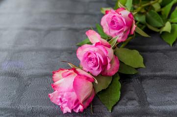 Fototapeta Bukiet róż obraz