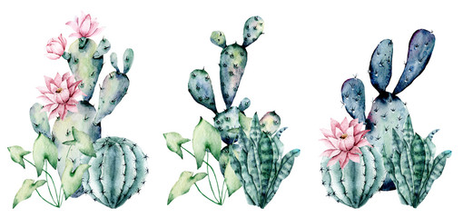 Fototapeta Watercolor blooming pink cactus and green, blue cacti set, hand drawn flowers illustration. Perfect for design stickers, icons,  greeting card, blog, banner. Isolated on white.  Cacti collection. obraz