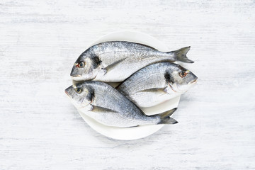 Fresh Royal Dorada on white wooden Background. Healthy food concept. Top view, copy space.