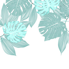 Tropical floral background with monstera and plumeria leaves.