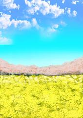 桜 菜の花 菜の花畑 空 青空 雲 イラスト